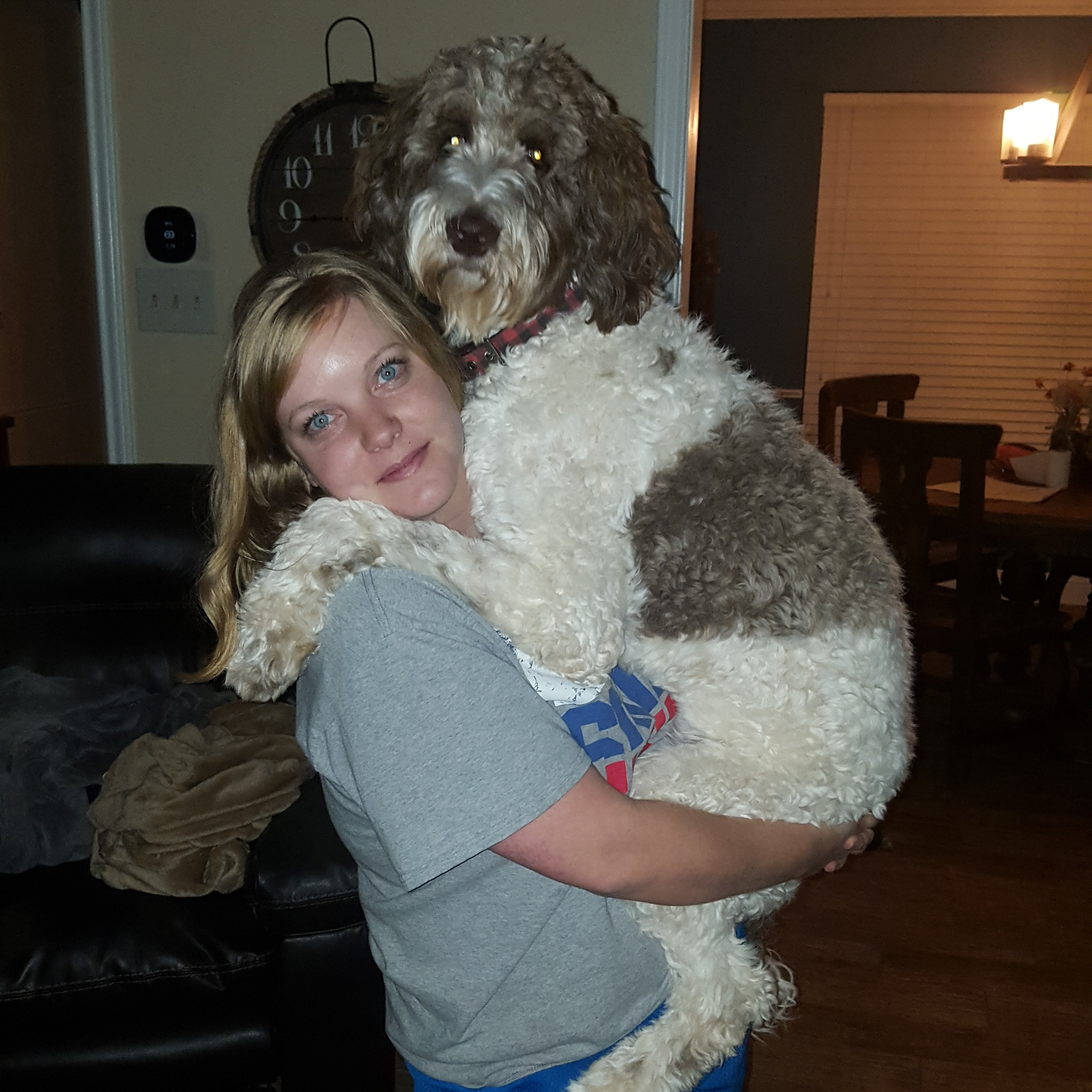 dog walker Amy & Carson