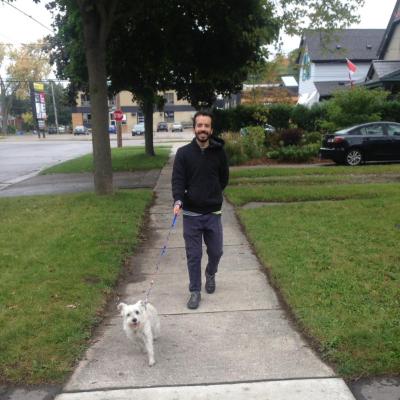 Tadeo's dog boarding