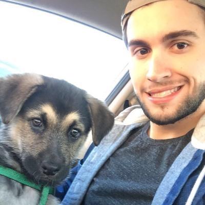 Wyatt's dog day care