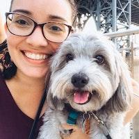 Kimberley Ann's dog day care
