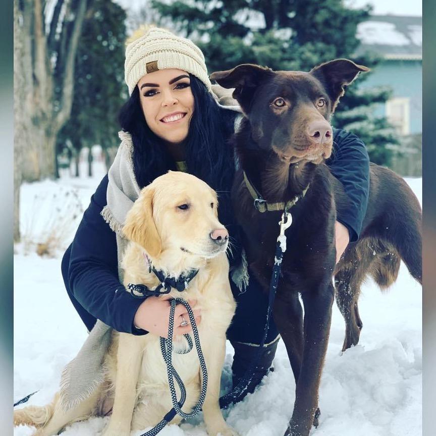Sidney's dog boarding