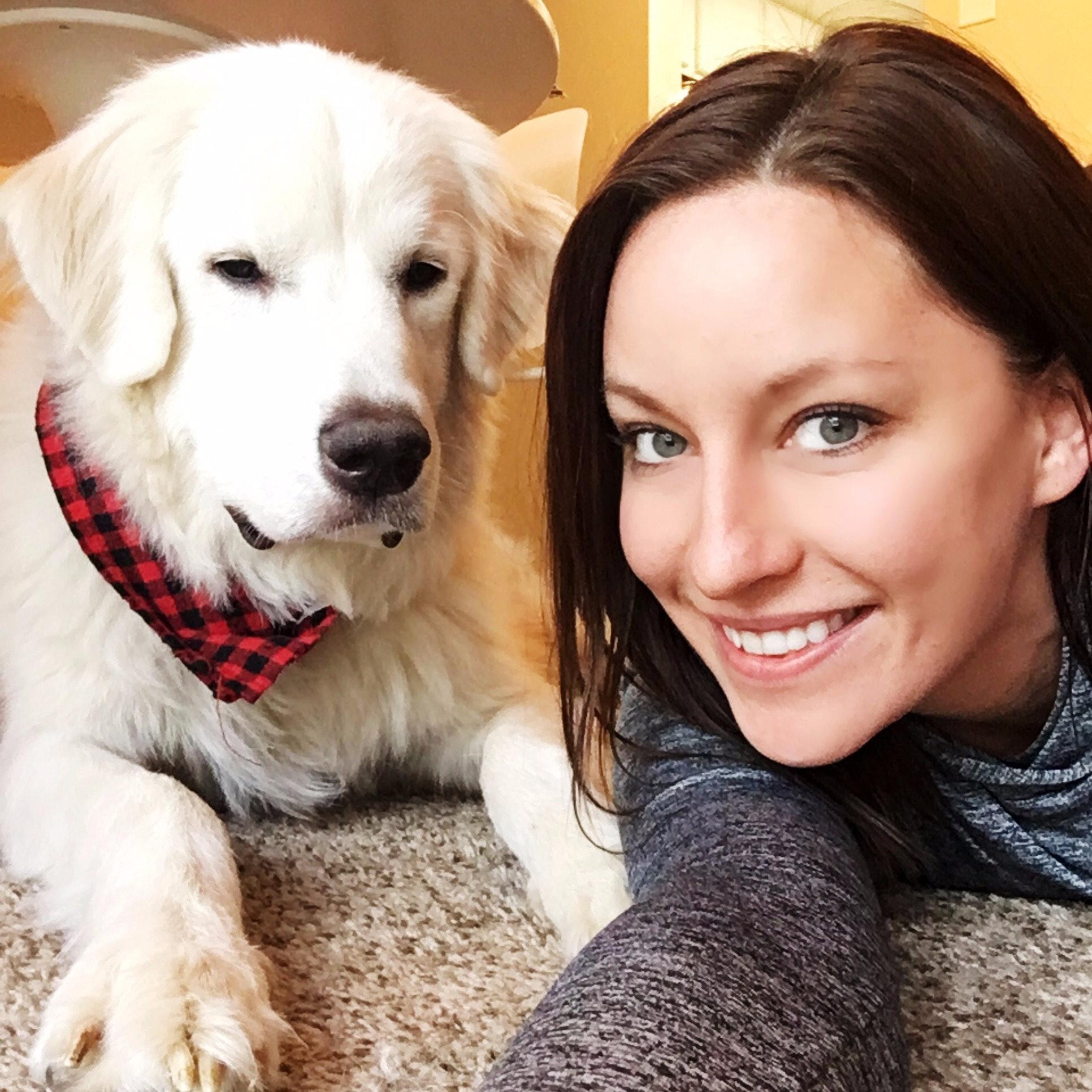 Scarlett's dog day care