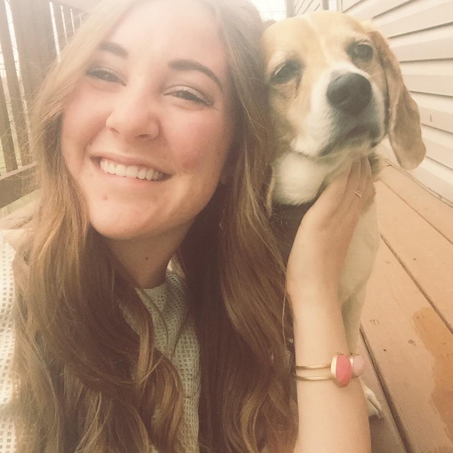 Maddie's dog boarding