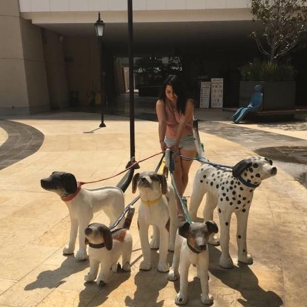 Magdalena's dog day care