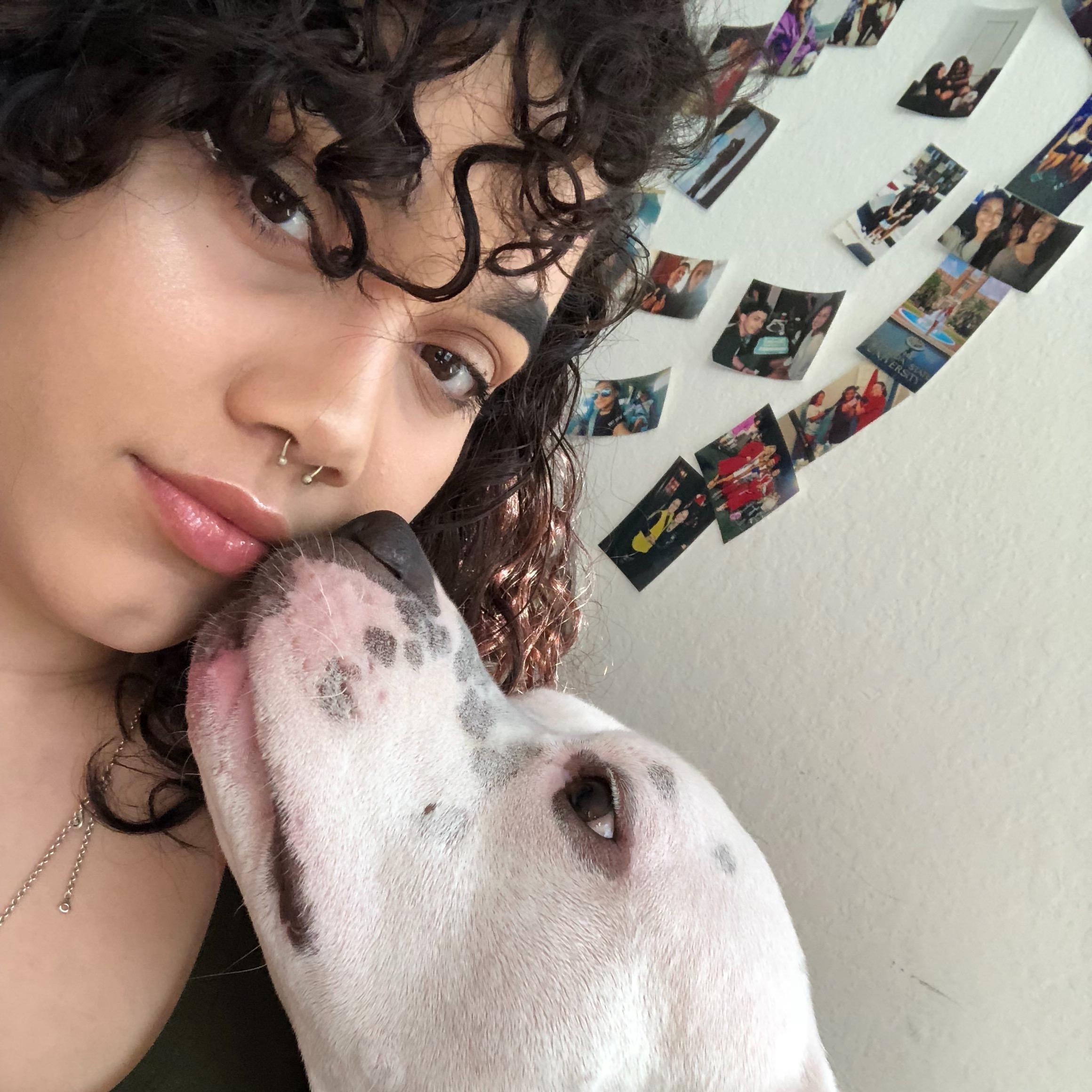 Lissette's dog day care