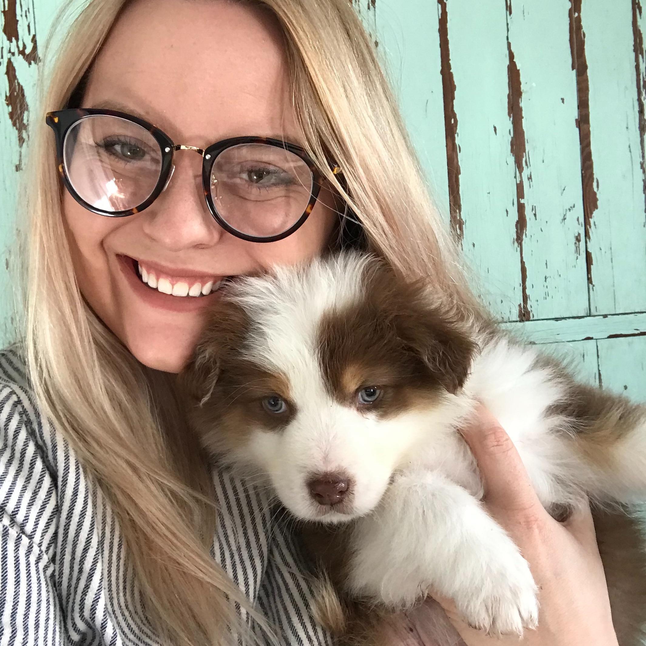 Sara's dog day care