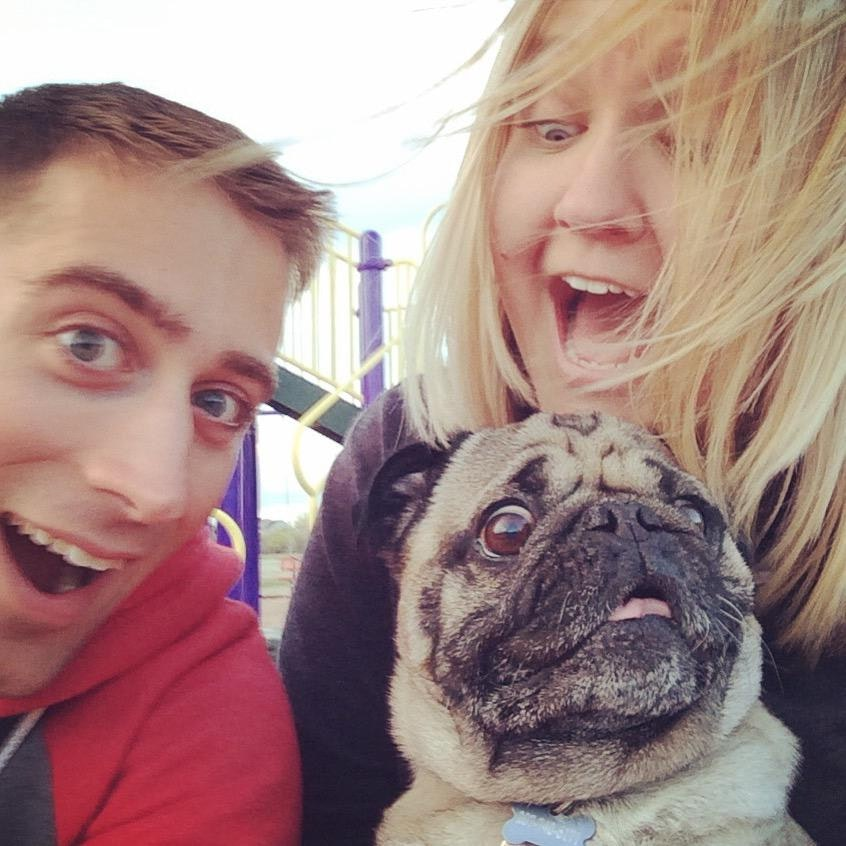 Elycia's dog day care