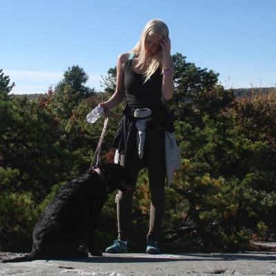 Saira's dog day care