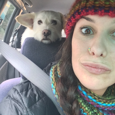 Alex's dog day care
