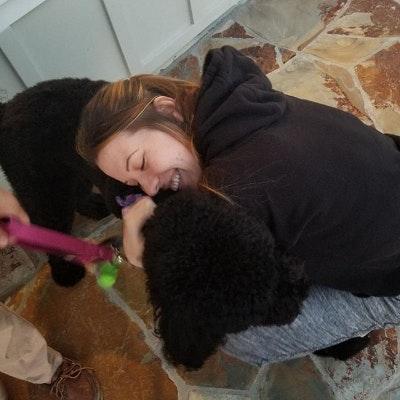 Nora's dog boarding