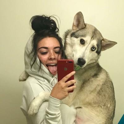 Cassady's dog day care