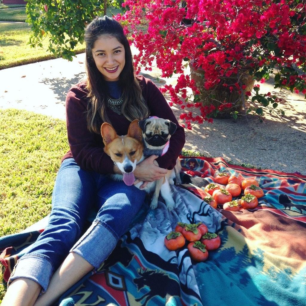 Carina's dog boarding