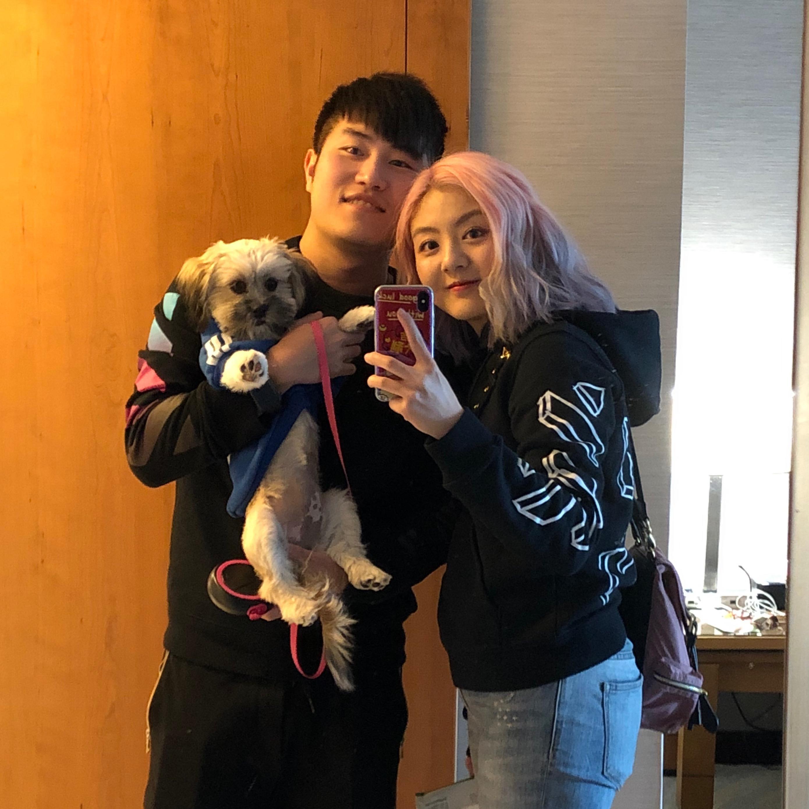 Yao's dog day care