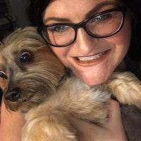 Amanda, Ellen, & Thomas's dog day care