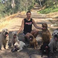 Angelina's dog day care
