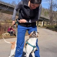 dog walker Celina