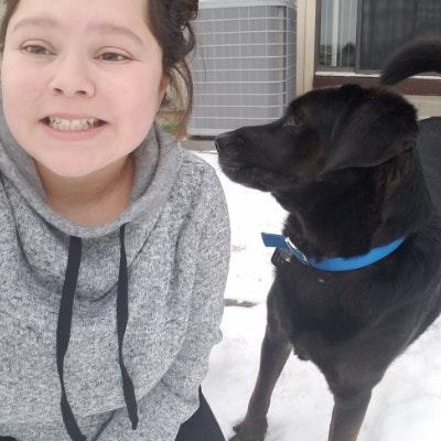 Raylene's dog boarding