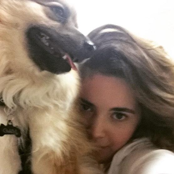 Elizabeth's dog day care