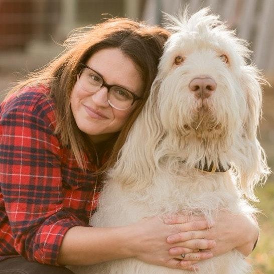 Clara's dog boarding