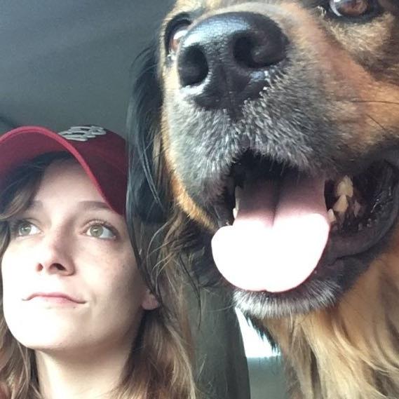 Cheyenna's dog day care