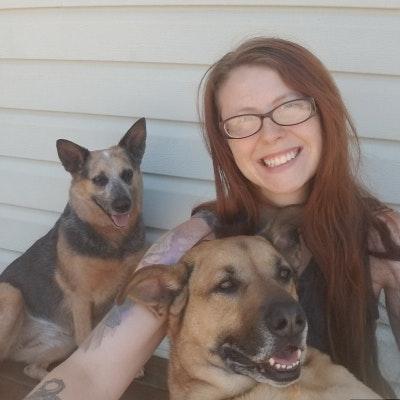 Cassy's dog day care