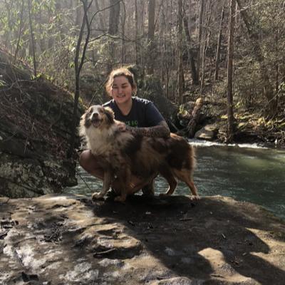 Darya's dog day care
