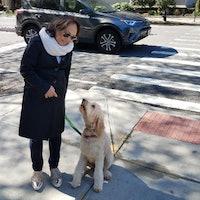 Elsie's dog day care