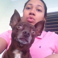 Saira's dog boarding