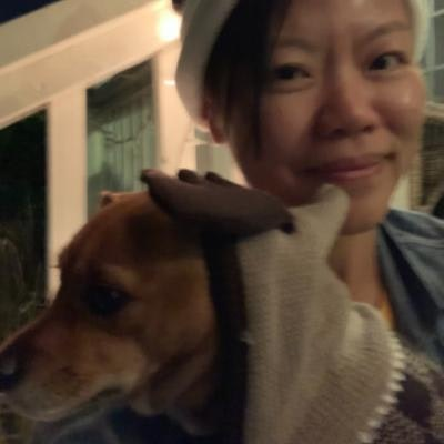 Y Thuan's dog boarding