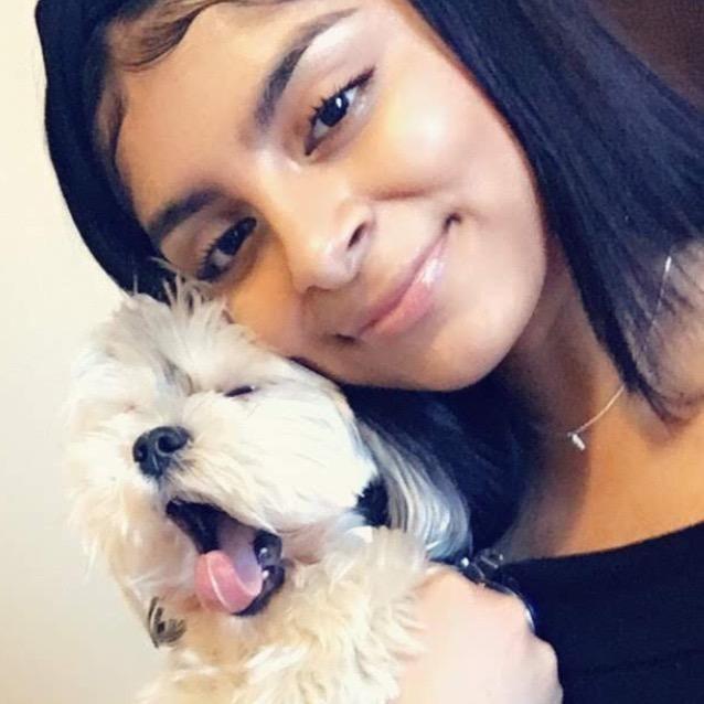 Isela's dog boarding