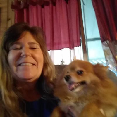 Susan's dog day care