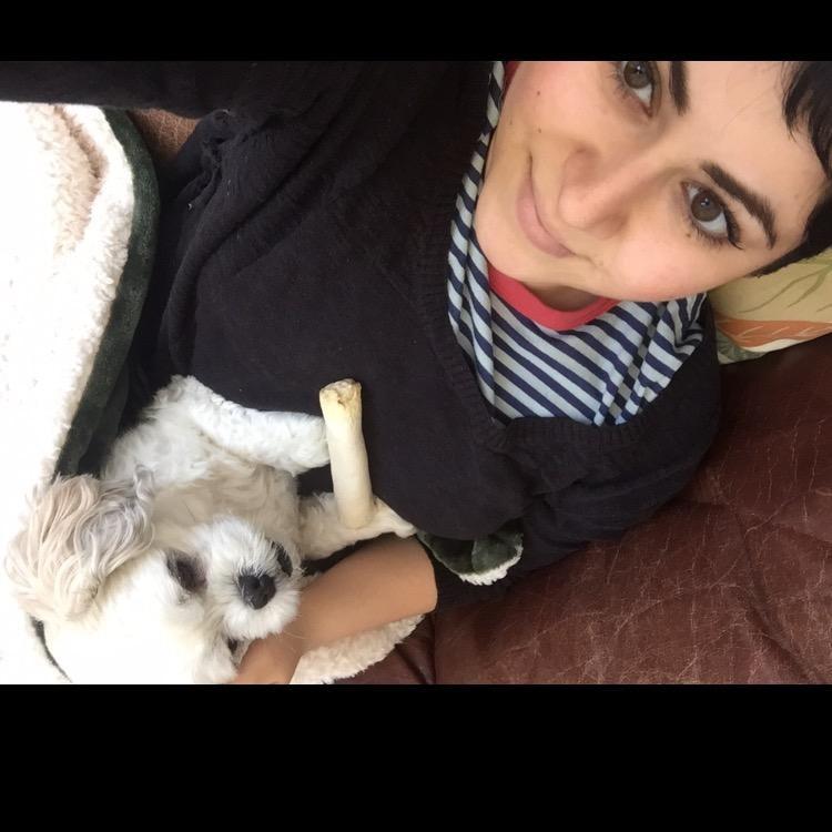 Laila's dog boarding