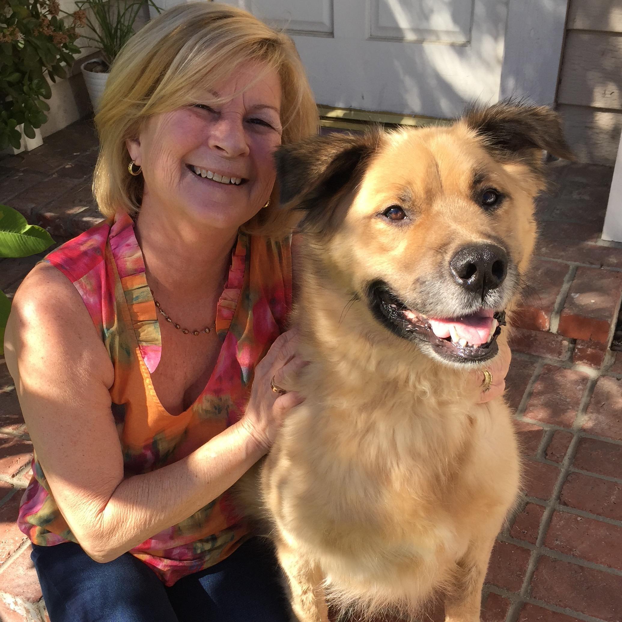 Suzanne & Rodney's dog day care