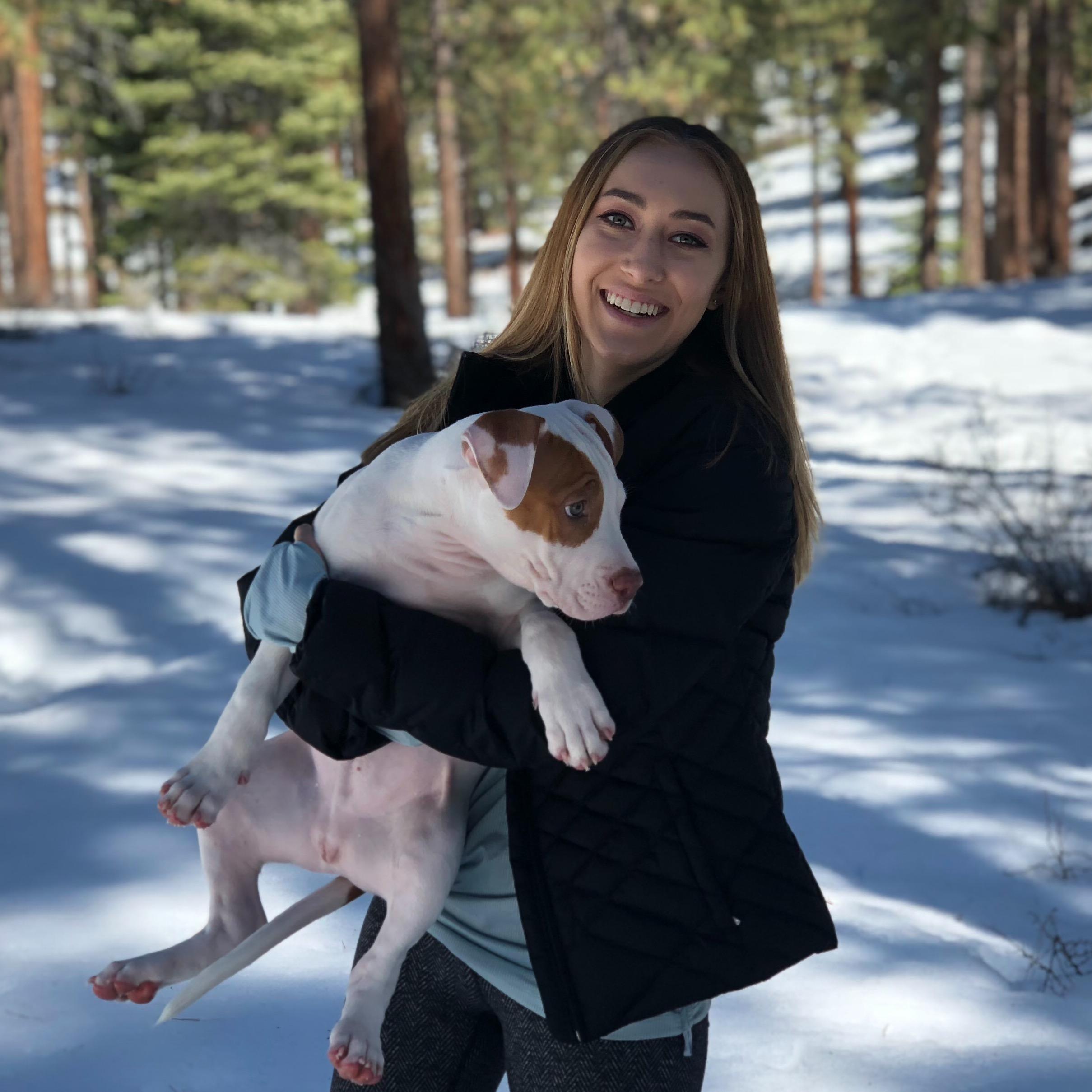 Savanah's dog day care
