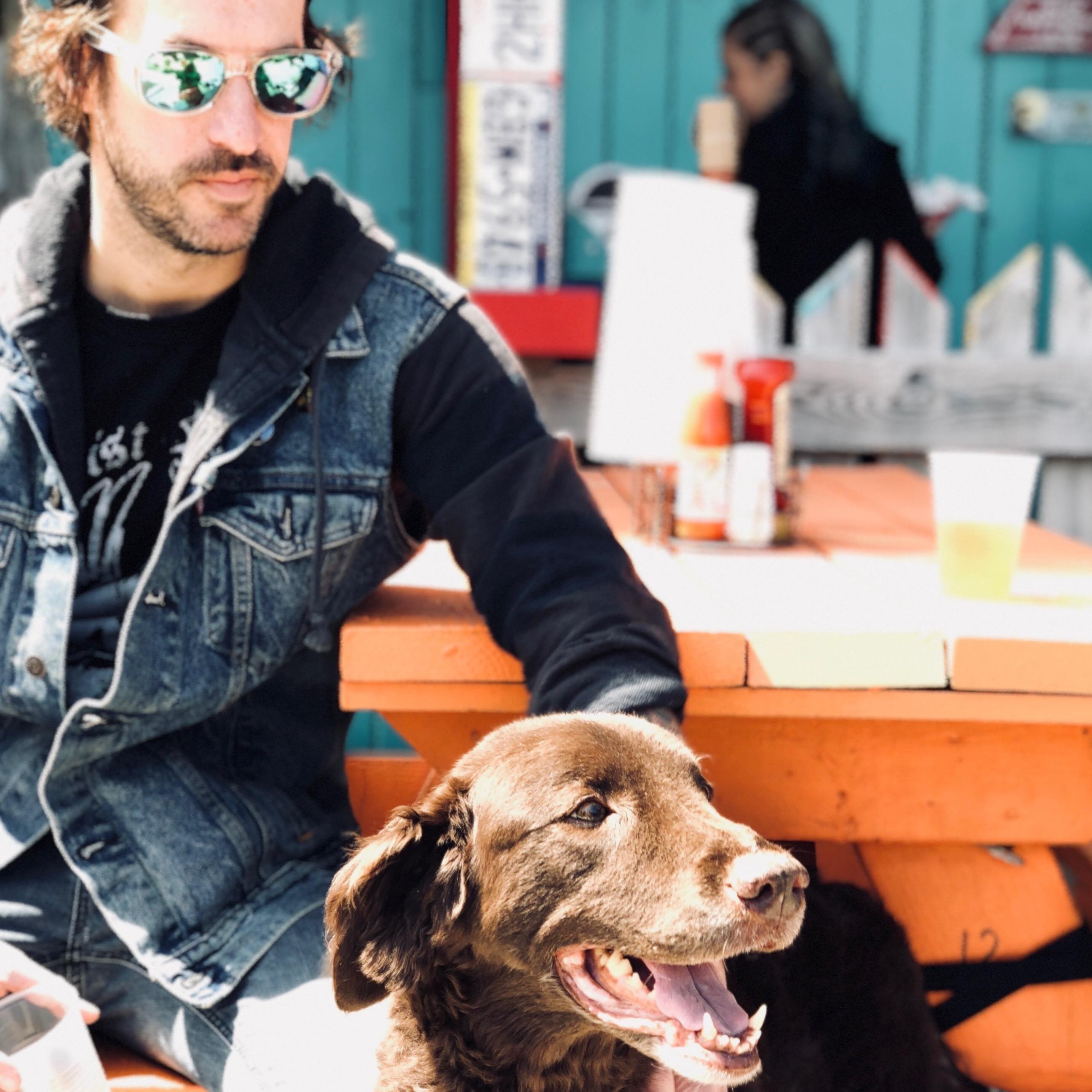 Josh & Kelli's dog day care