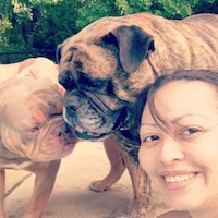 Ximena & Christopher's dog day care