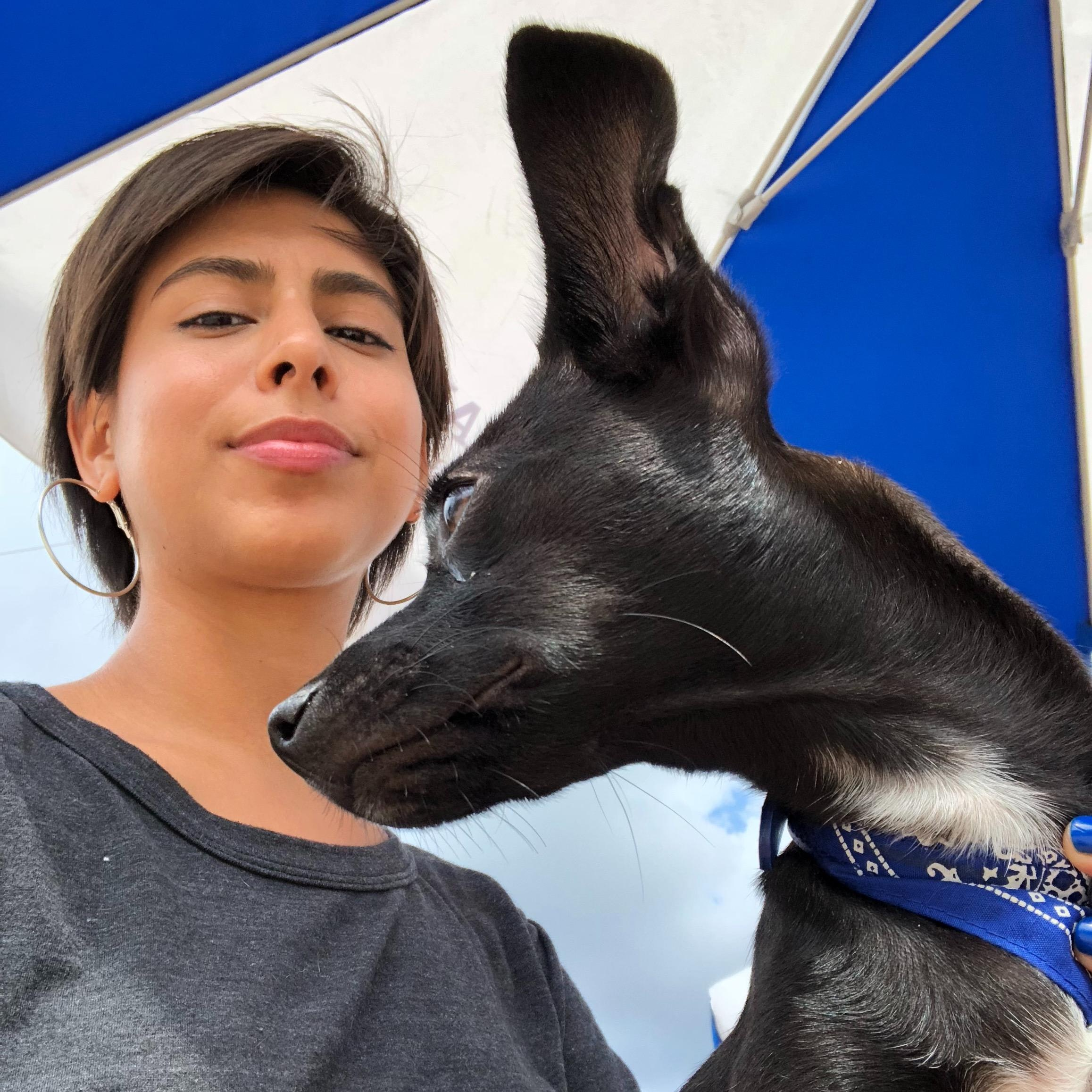 dog walker Orfa
