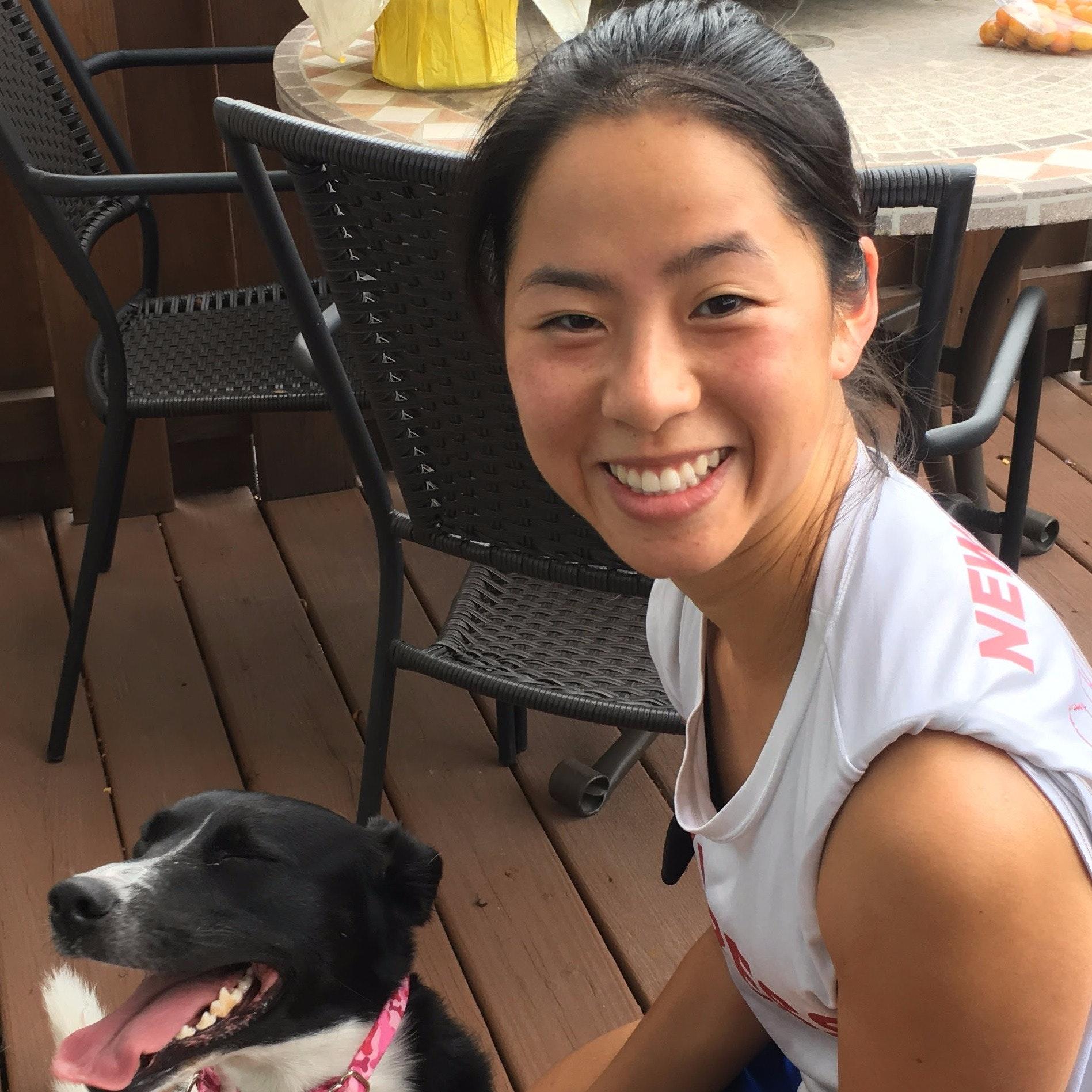 Amelia's dog boarding