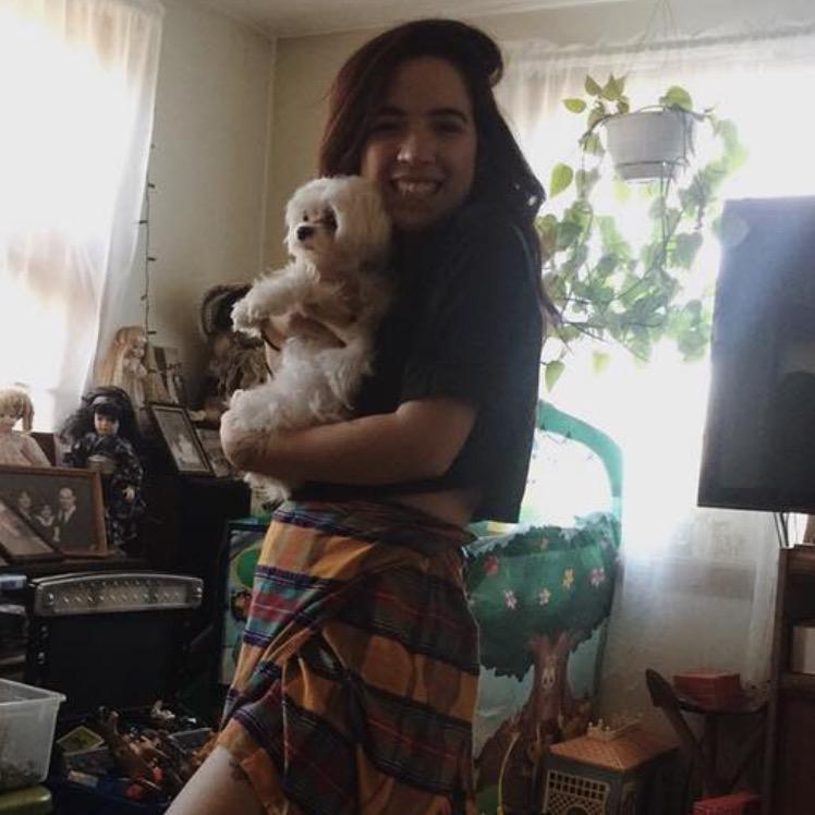 Ishbel's dog boarding