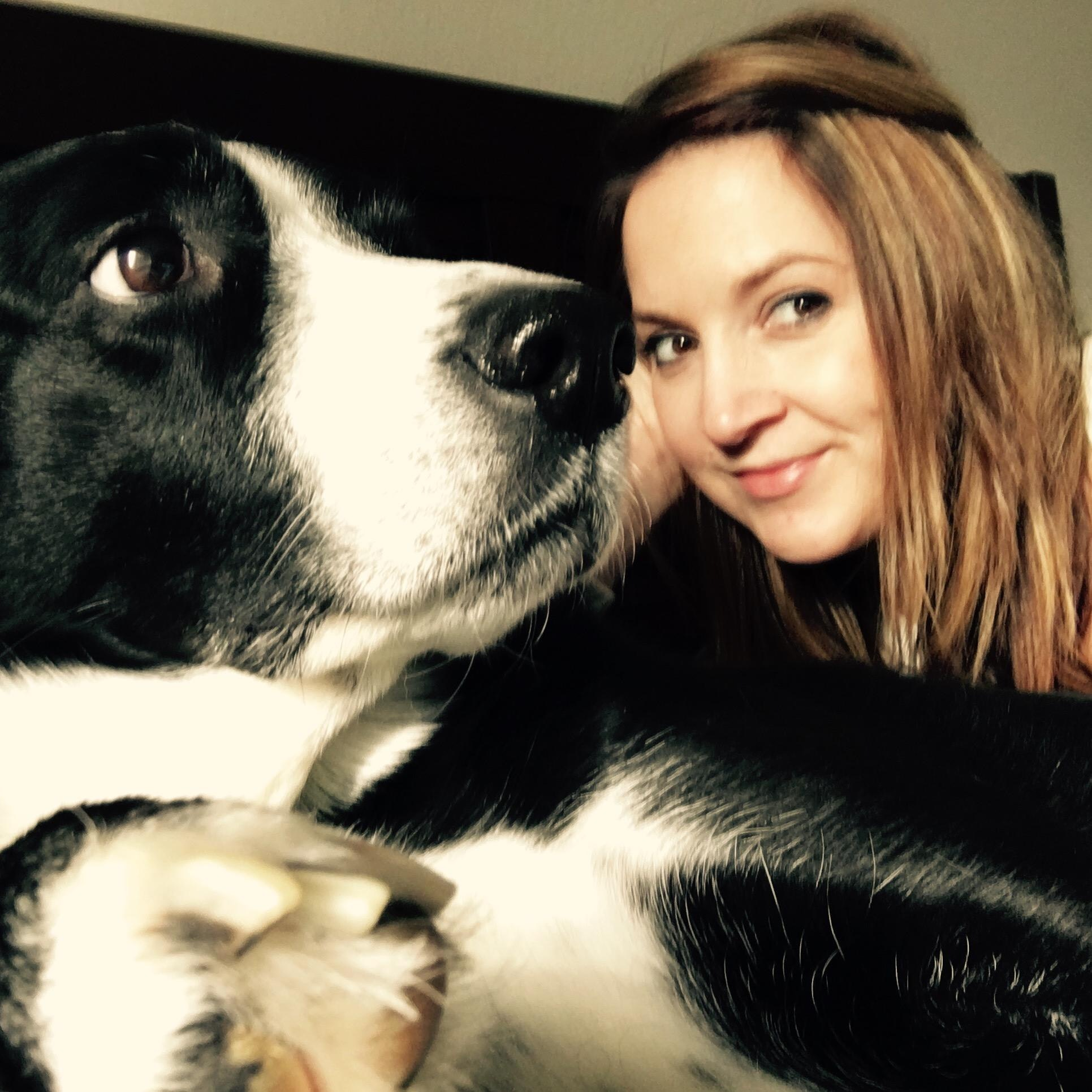 Elle's dog day care