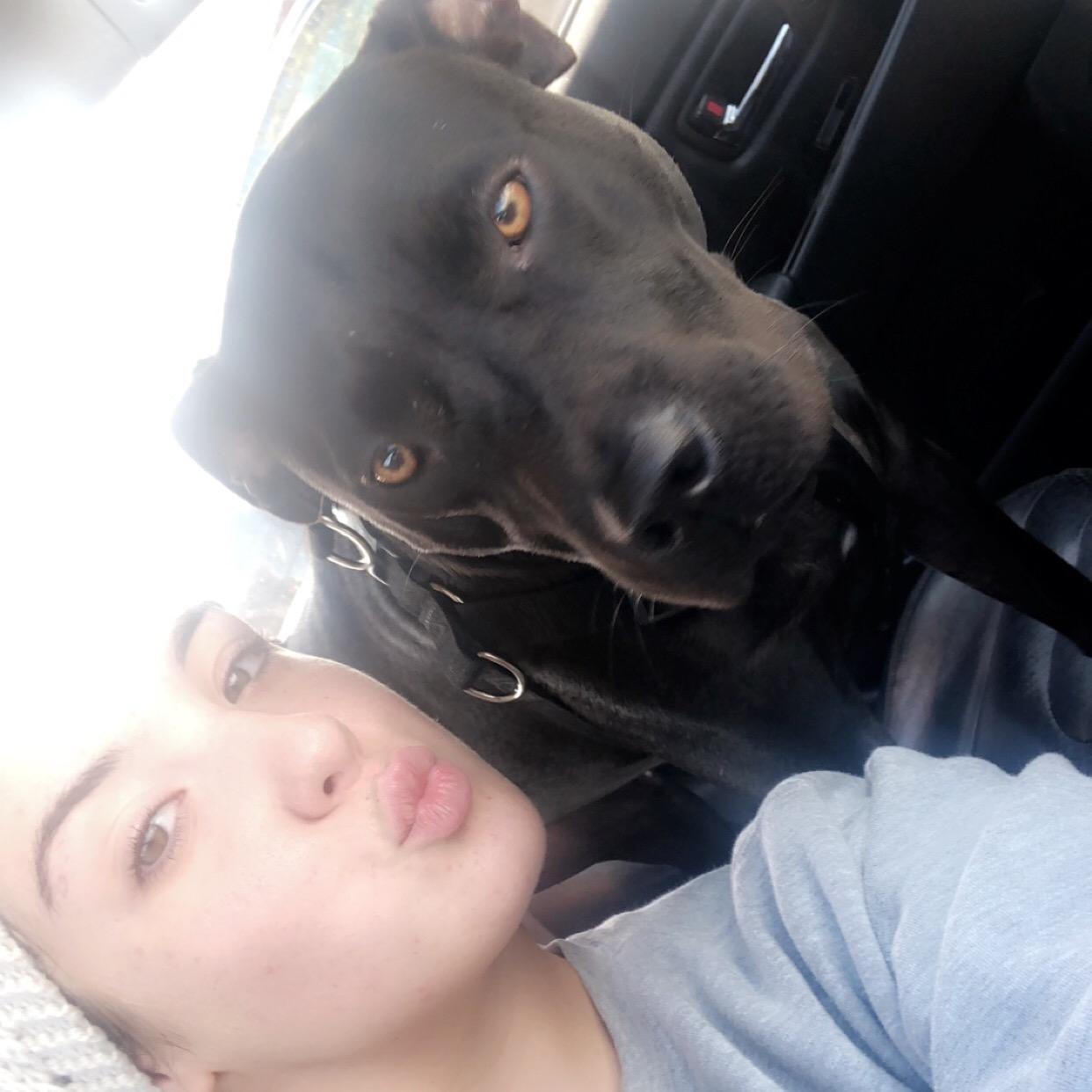 dog walker Haylee