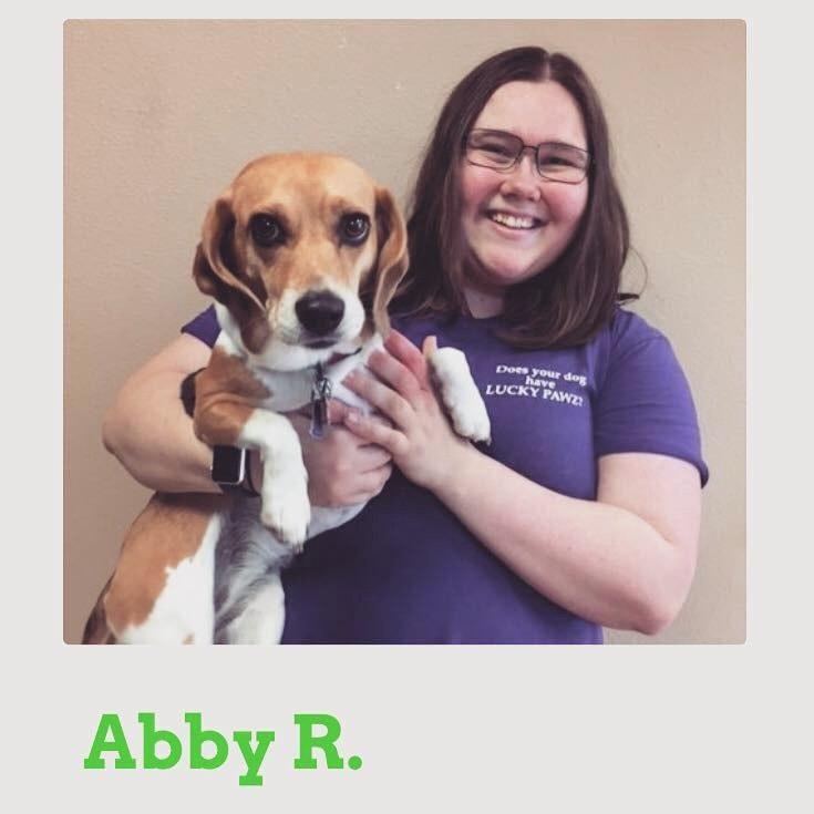 dog walker Abby