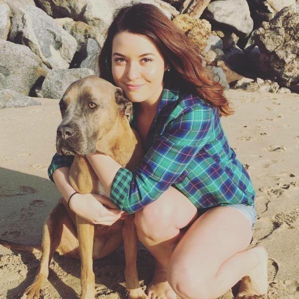 dog walker Cheyenne