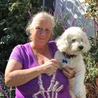 dog walker Sharyn