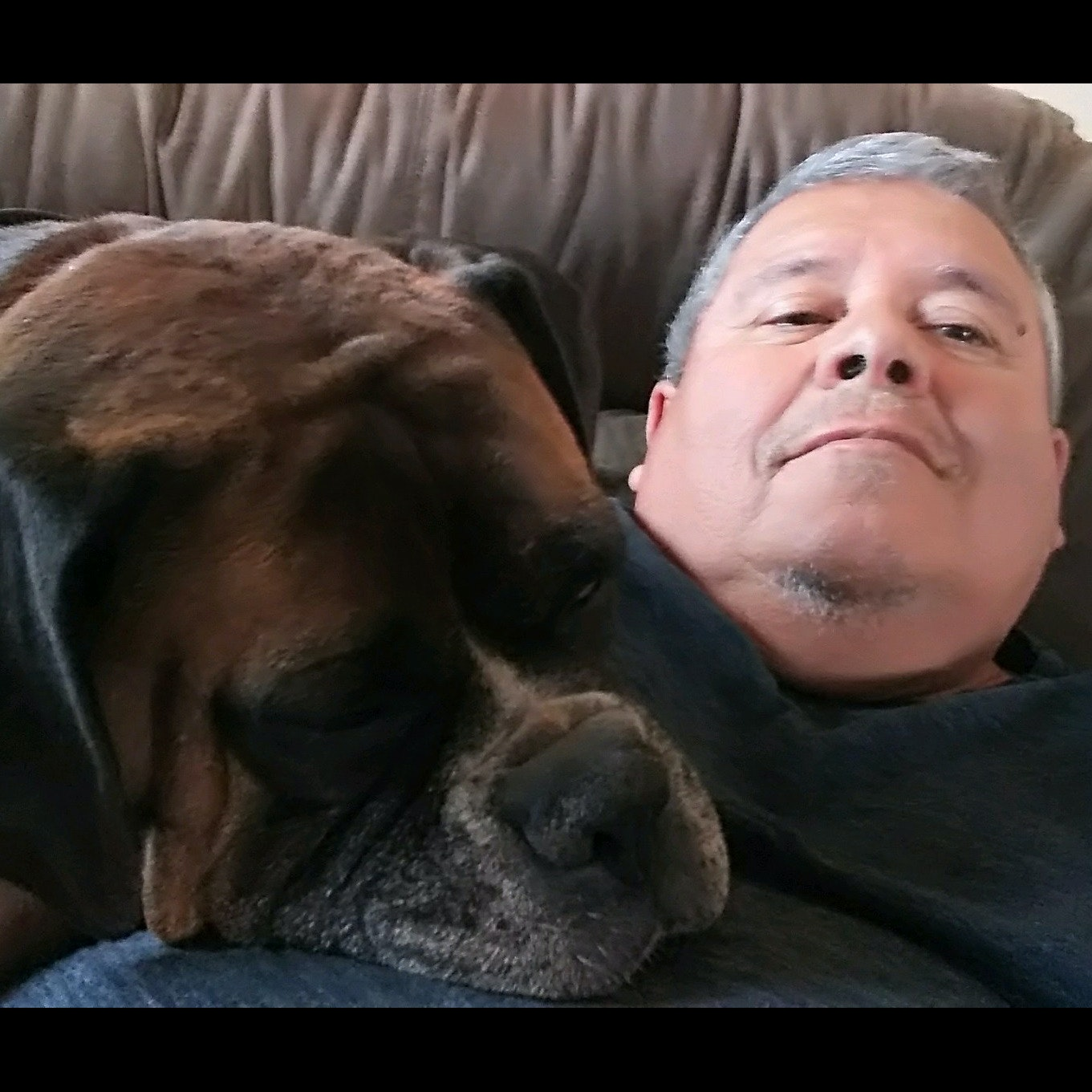Gilbert's dog day care