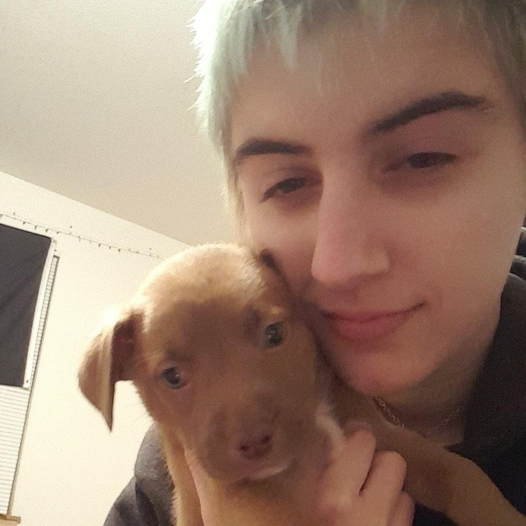 dog walker Kira