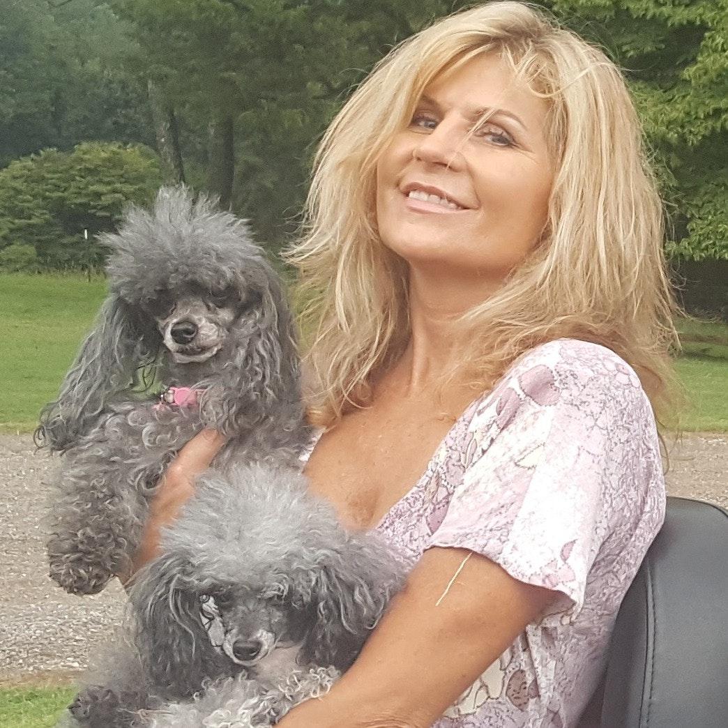 Teresa's dog boarding