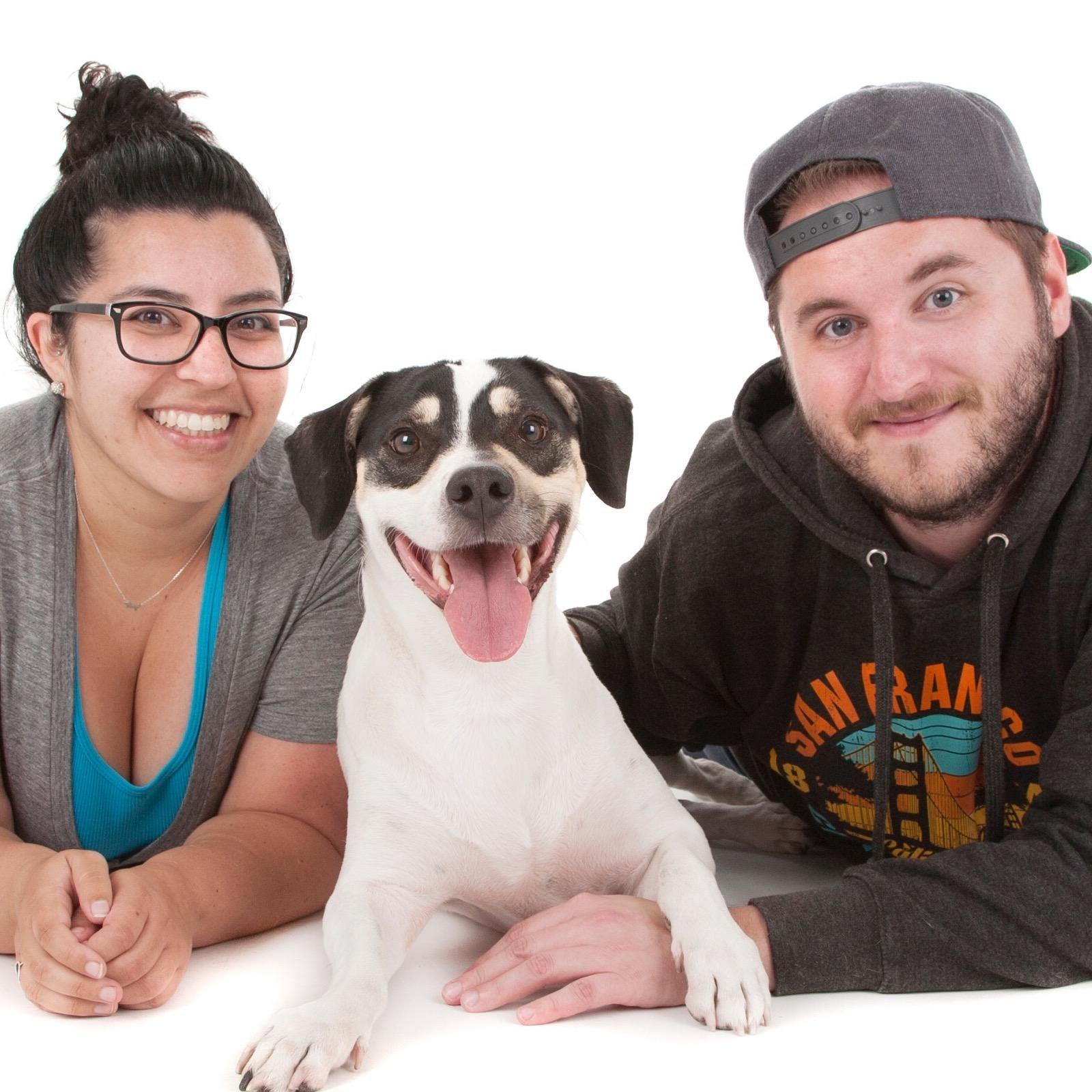 Derek's dog day care
