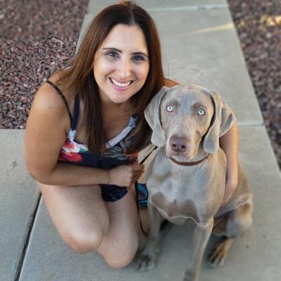 Brenda & Brent's dog boarding