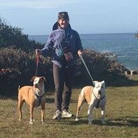 Lynn E's dog day care